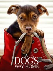 A-Dogs-Way-Home-2019-greek-subs-online-gamatomovies